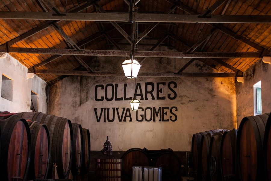 Viúva Gomes Cellar and Colares Wines